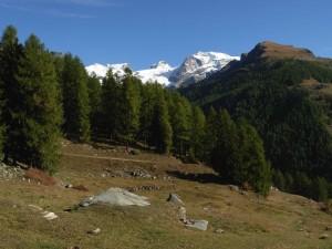 Pascoli di Nannaz e il Polluce lungo l'Altavia1 (Ayas) - Foto di Gian Mario Navillod.