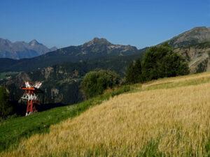 Il campo d'orso di Chamois dove nasce la birra più alta d'Europa - Foto di Gian Mario Navillod.